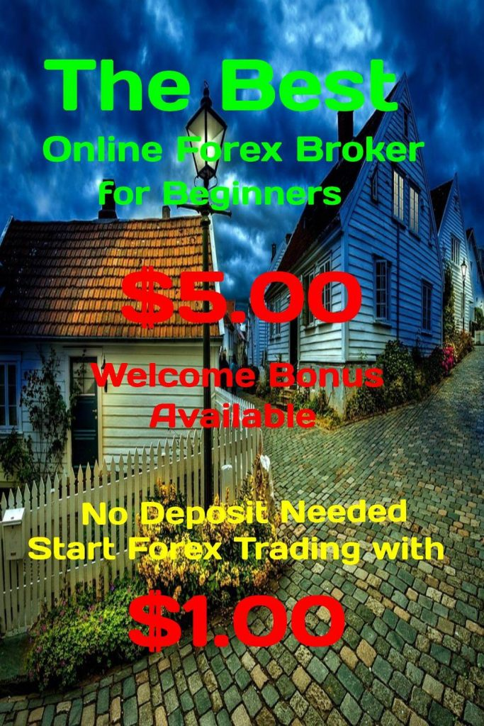 12-0403The Best Online Forex Broker for Beginners