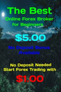 The Best Online Forex Broker for Beginners