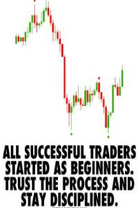 all successful traders started as beginners